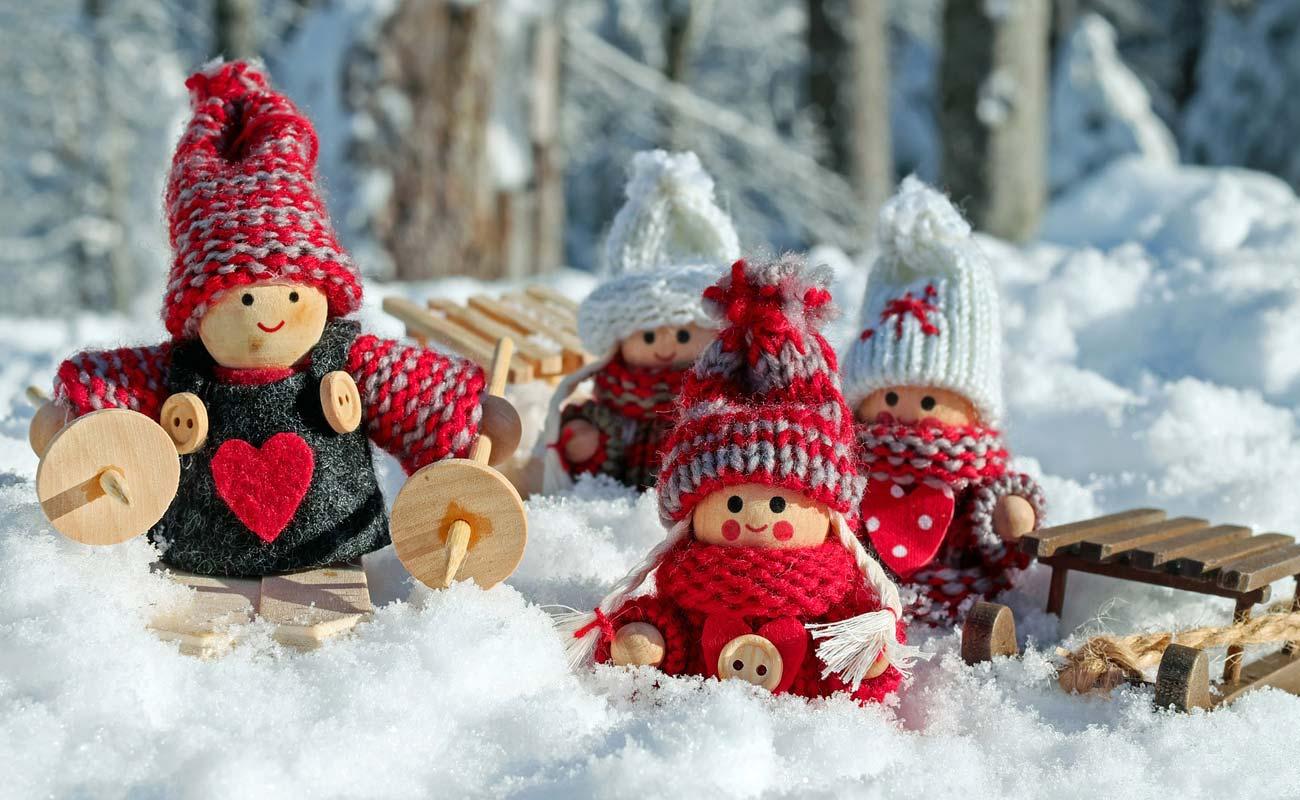 vacanta de iarna dsbu