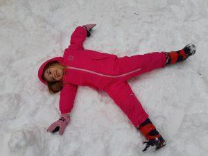 Der erste Schnee - dsbu