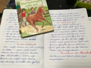 Das Lesetagebuch der Klasse 3 - dsbu