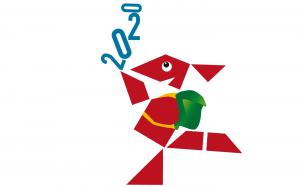 Mathe Kaenguru 2020 - dsbu